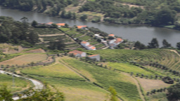 Terraced vineyards in Douro Valley Stock Video Footage