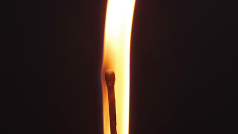 Burning match - vertically Stock Video Footage