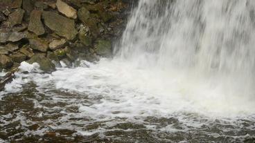 Hilton Falls Waterfall Base 00183 Stock Video Footage