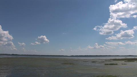 Lake Tohopekaliga Footage