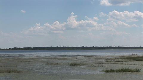 Lake Tohopekaliga Stock Video Footage
