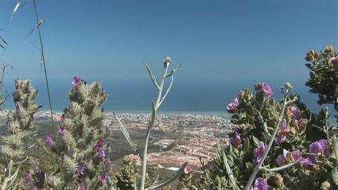 Benalmadena, Spain Footage