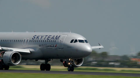 Skyteam Air France airplane landing softly 11029 Footage