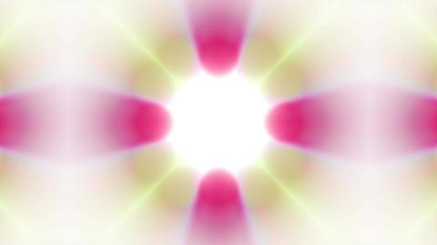flower fancy pattern,gorgeous orient religion fancy... Stock Video Footage