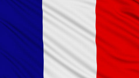 French flag, with real structure of a fabric Animation