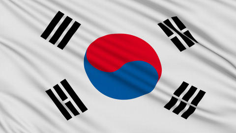 South Korean flag, with real structure of a fabric Stock Video Footage