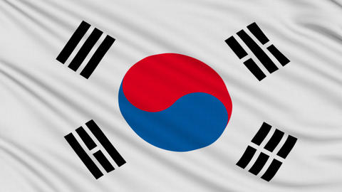 South Korean flag, with real structure of a fabric Animation