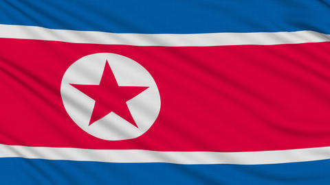 North Korean flag, with real structure of a fabric Stock Video Footage