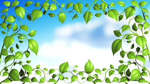 Plant pattern with leaves is growing on sky backgr Stock Video Footage