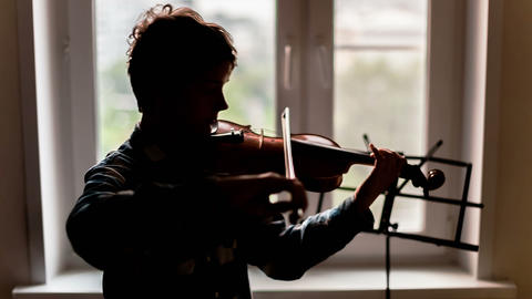 Violinist Stock Video Footage