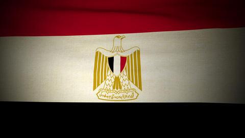 Flag Egypt 04 Stock Video Footage