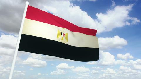 Flag Egypt 02 Stock Video Footage