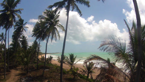 Wide Timelapse of Tropical Beach Stock Video Footage