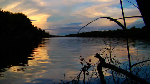 Sunset over the beautiful Amazon River basin, Braz Stock Video Footage