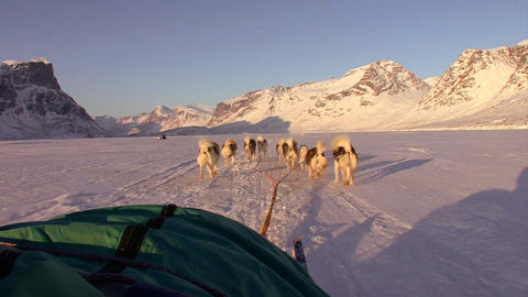 A POV shot from a dogsled heading across the Arcti Stock Video Footage