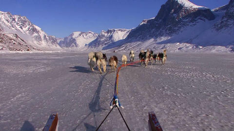 POV from a dogsled heading across the Arctic tundr Footage