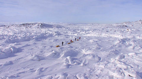 An Arctic expedition moves across a vast landscape Stock Video Footage