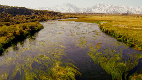 The camera moves across a bridge to reveal a beaut Footage