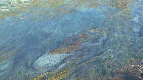 Blue water flows in a mountain stream in a beautif Stock Video Footage