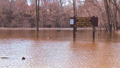 A park is flooded after heavy rains Stock Video Footage