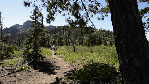 A man riding his horse on the Pacific Crest Trail Stock Video Footage