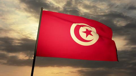 Flag Tunisia 03 Stock Video Footage
