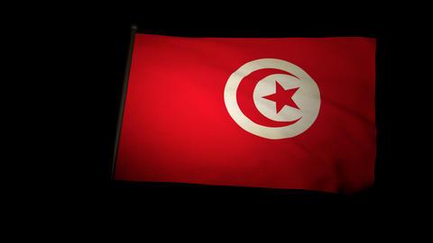 Flag Tunisia 01 Stock Video Footage