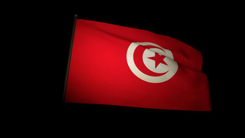 Flag Tunisia 01 Stock Video Footage