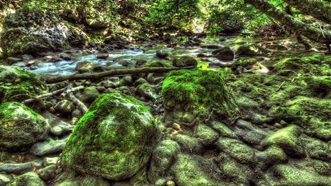 4k. Moss-Covered Boulders. HDR Time Lapse shot mot Footage