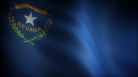 Flag of Nevada Stock Video Footage