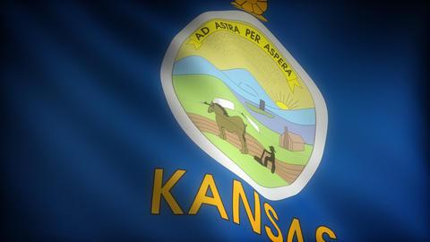 Flag of Kansas Stock Video Footage