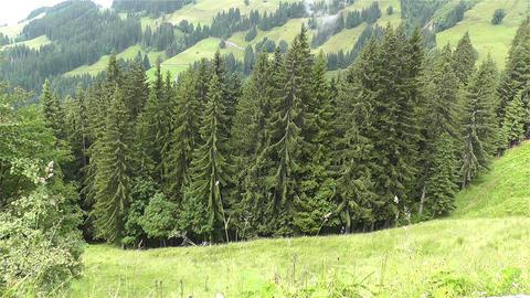 European Alps Kitzbuhel Austria 1 1 Stock Video Footage