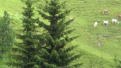 European Alps Kitzbuhel Austria Aerial 40 Stock Video Footage