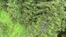 European Alps Kitzbuhel Austria Aerial 42 Footage