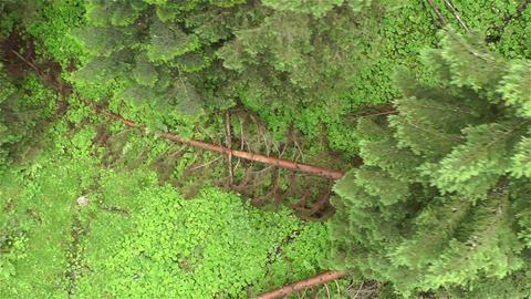 European Alps Kitzbuhel Austria Aerial 44 Footage