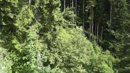 European Alps Kitzbuhel Austria Aerial 54 Stock Video Footage