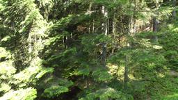 European Alps Kitzbuhel Austria Aerial 60 Stock Video Footage