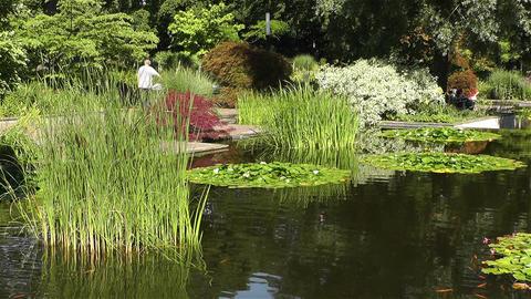 Park in Hamburg Germany 2 Stock Video Footage