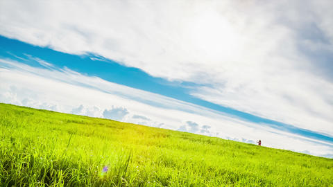 Young woman runs across the meadow Stock Video Footage