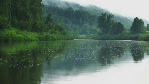 Calm landscape with quiet river in a green forest Footage