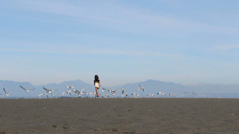Asian Girl Chasing Down Birds On The Beach Stock Video Footage