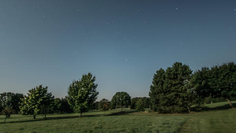 full moon time lapse tree shadow 11052 Stock Video Footage