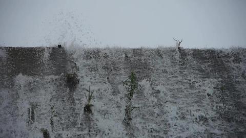 waterfall & spindrift,swing grass on dam Animation