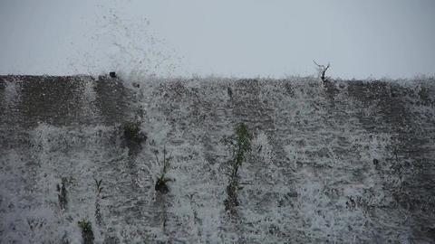 waterfall & spindrift,swing grass on dam Stock Video Footage