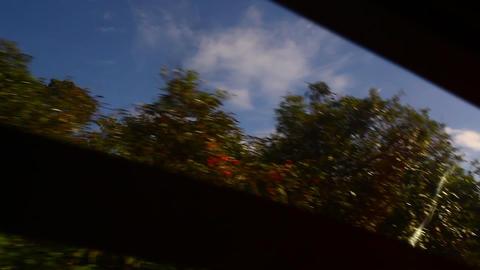 Vehicle dashboard Footage