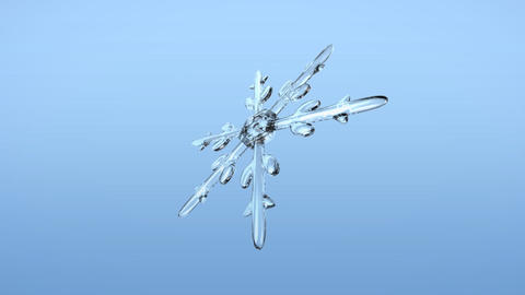 Snow Crystals single alpha Animation