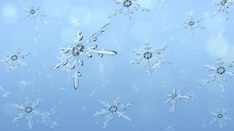 Snow 199 1