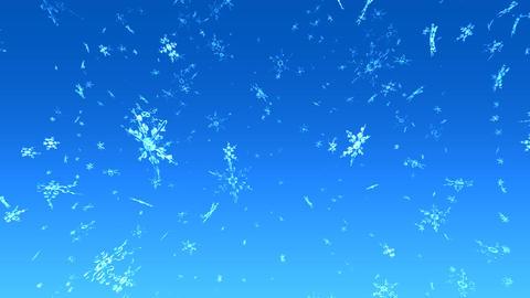 Snow 199 2