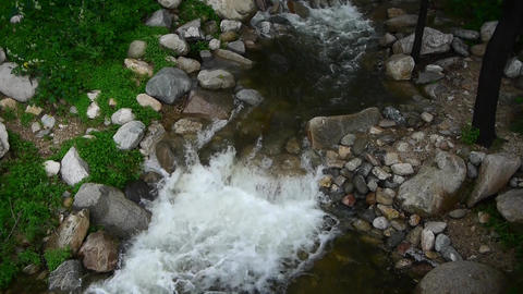 Mountain creek stream from forests & shrubs Stock Video Footage