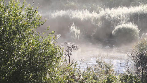 Morning Fog On The River stock footage